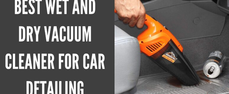 Best Wet and Dry Vacuum Cleaner for Car Detailing