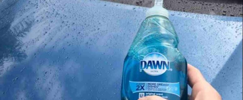 Can you wash a car with dish soap